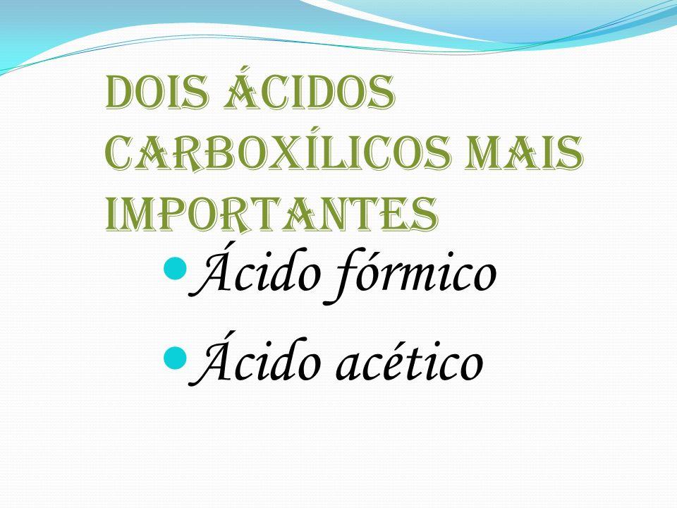 dois ácidos carboxílicos mais importantes
