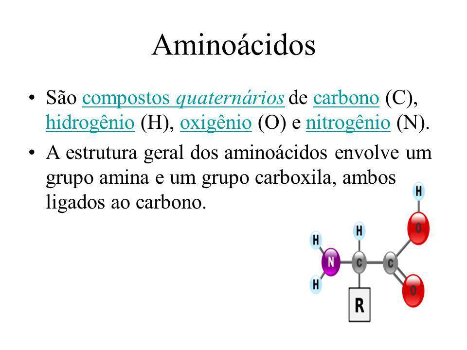 Aminoácidos São compostos quaternários de carbono (C), hidrogênio (H), oxigênio (O) e nitrogênio (N).