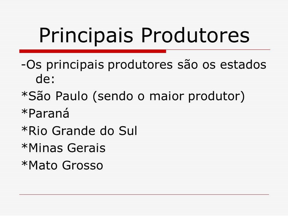 Principais Produtores