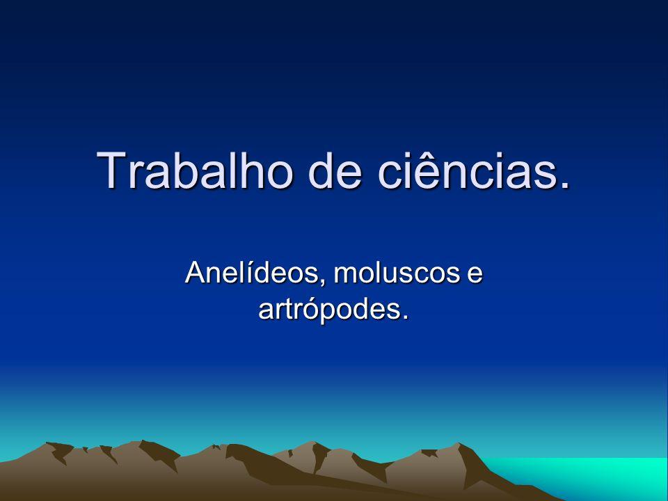 Anelídeos, moluscos e artrópodes.
