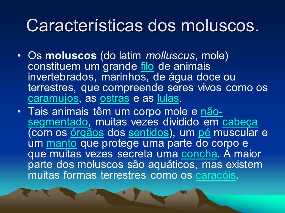 Características dos moluscos.