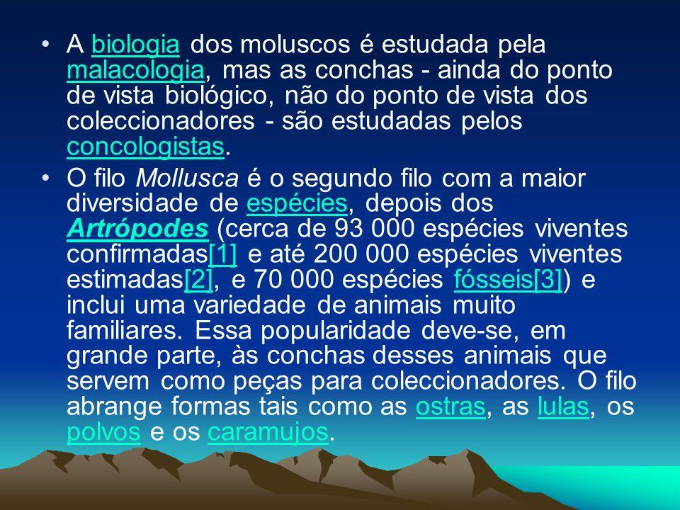 A biologia dos moluscos é estudada pela malacologia, mas as conchas - ainda do ponto de vista biológico, não do ponto de vista dos coleccionadores - são estudadas pelos concologistas.