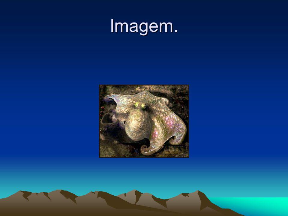 Imagem.