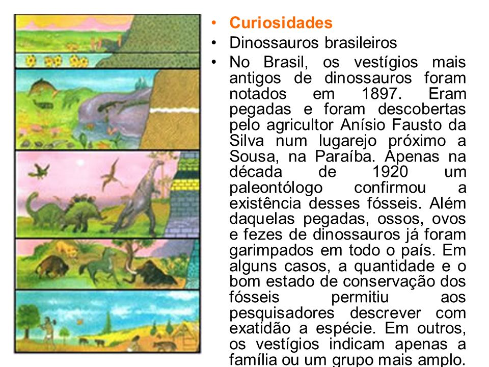 CuriosidadesDinossauros brasileiros.