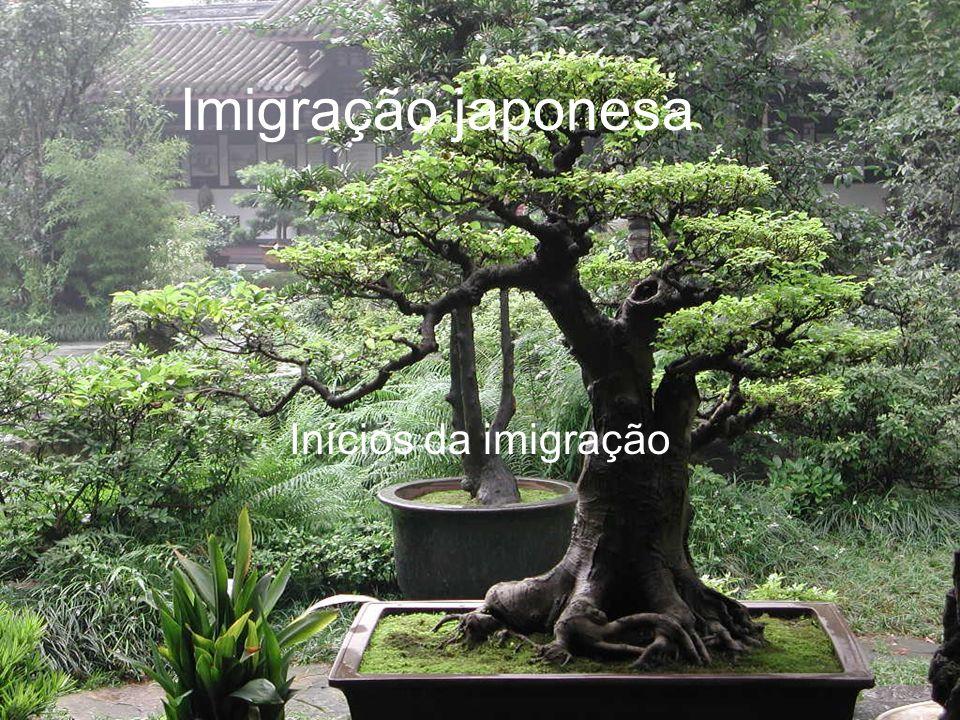 Imigração japonesa Inícios da imigração