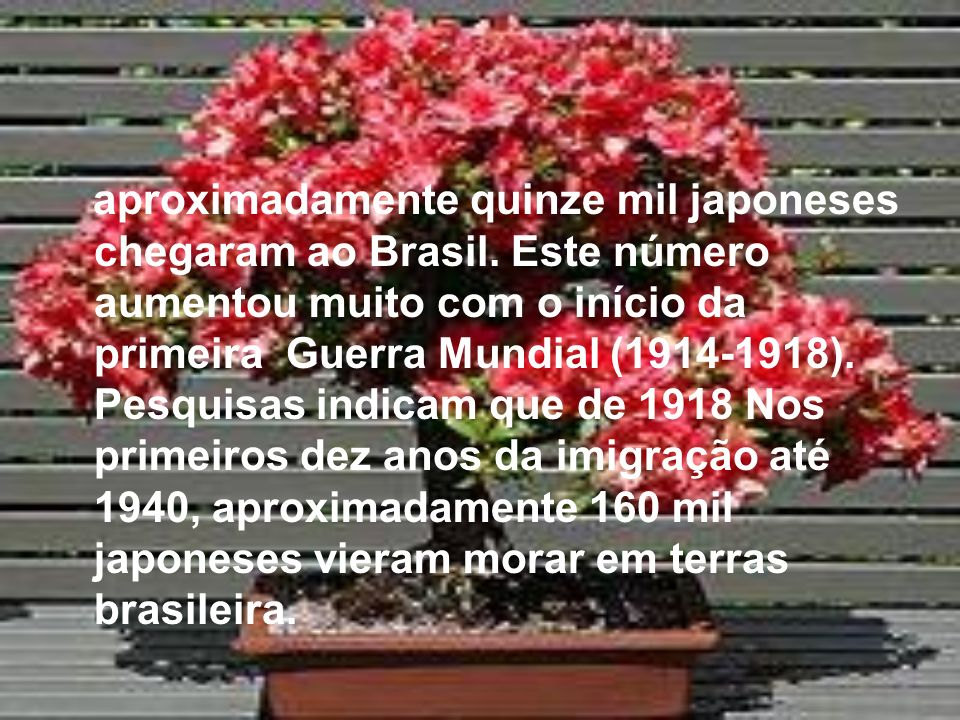 aproximadamente quinze mil japoneses chegaram ao Brasil
