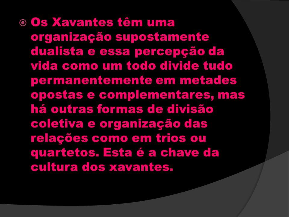 Os Xavantes têm uma organização supostamente dualista e essa percepção da vida como um todo divide tudo permanentemente em metades opostas e complementares, mas há outras formas de divisão coletiva e organização das relações como em trios ou quartetos.