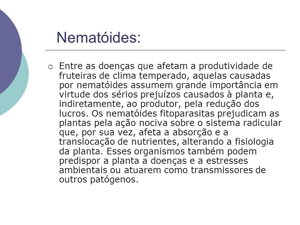 Nematóides: