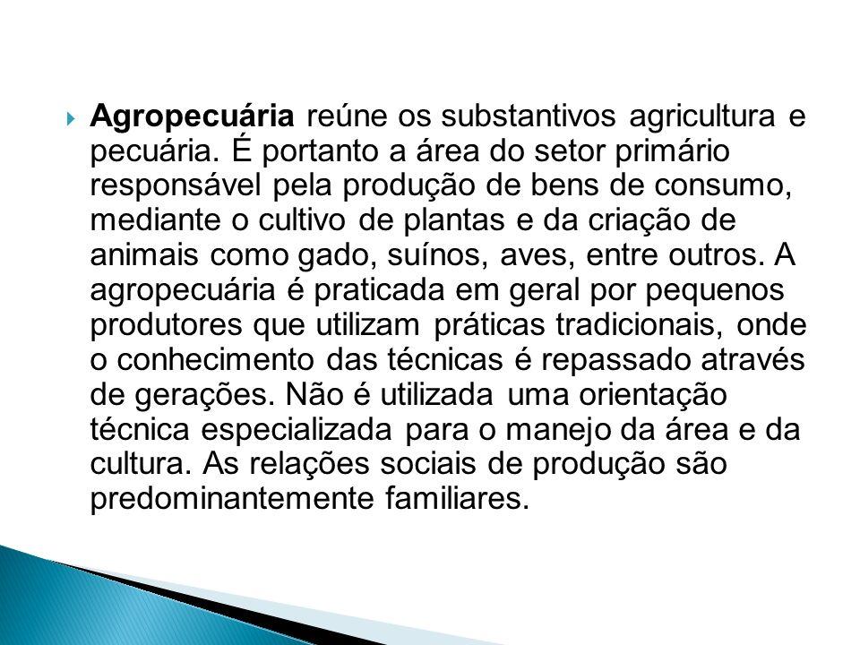 Agropecuária reúne os substantivos agricultura e pecuária
