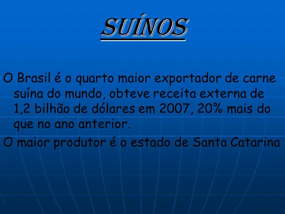 Suínos