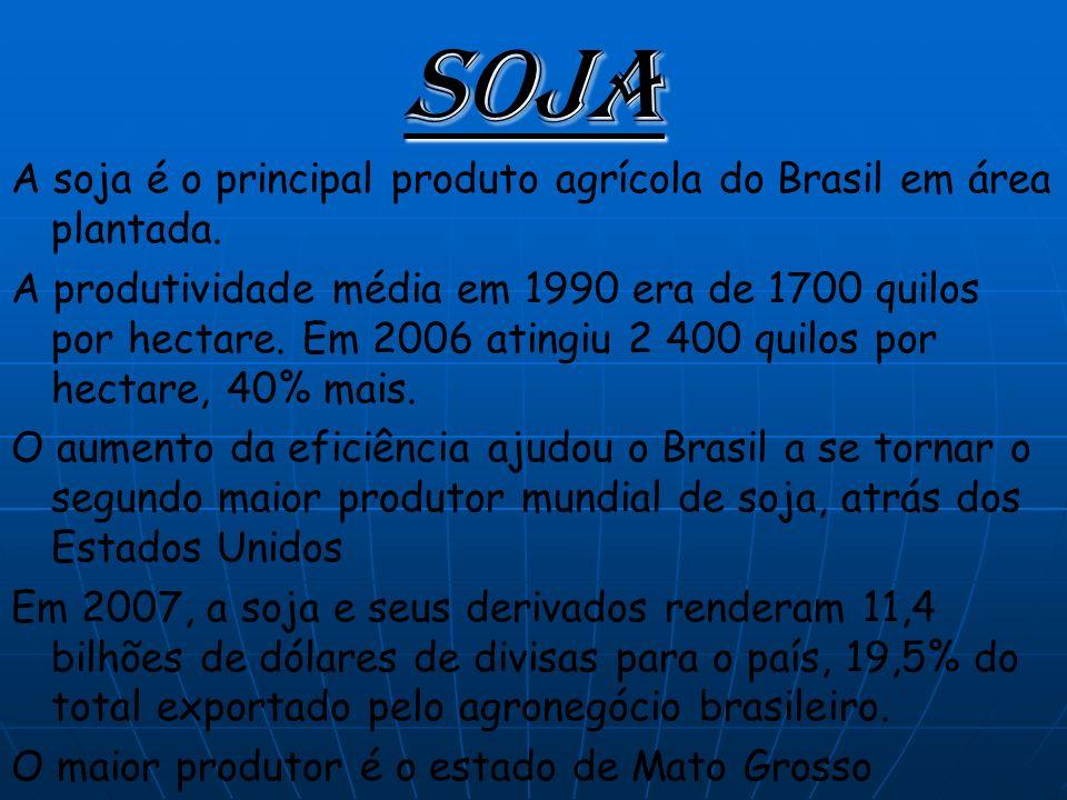 Soja A soja é o principal produto agrícola do Brasil em área plantada.
