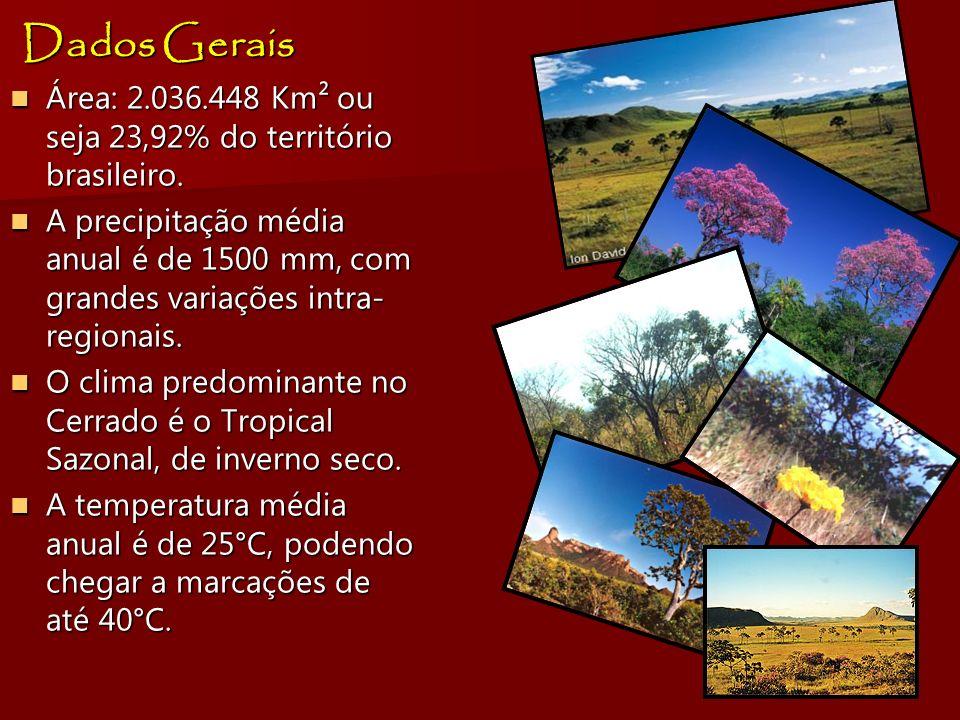 Dados GeraisÁrea: 2.036.448 Km² ou seja 23,92% do território brasileiro.