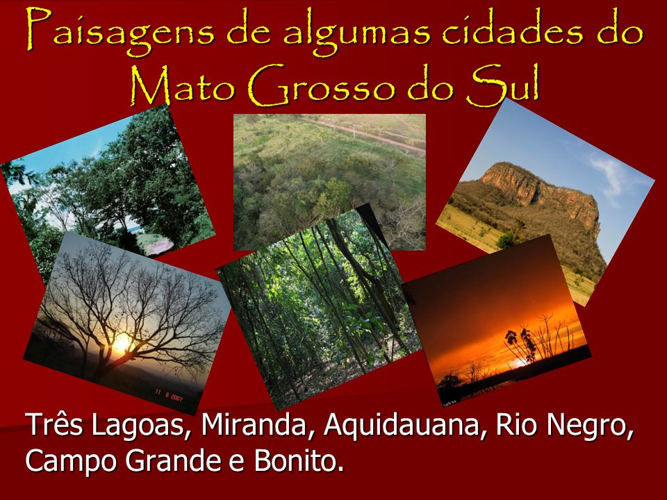 Paisagens de algumas cidades do Mato Grosso do Sul