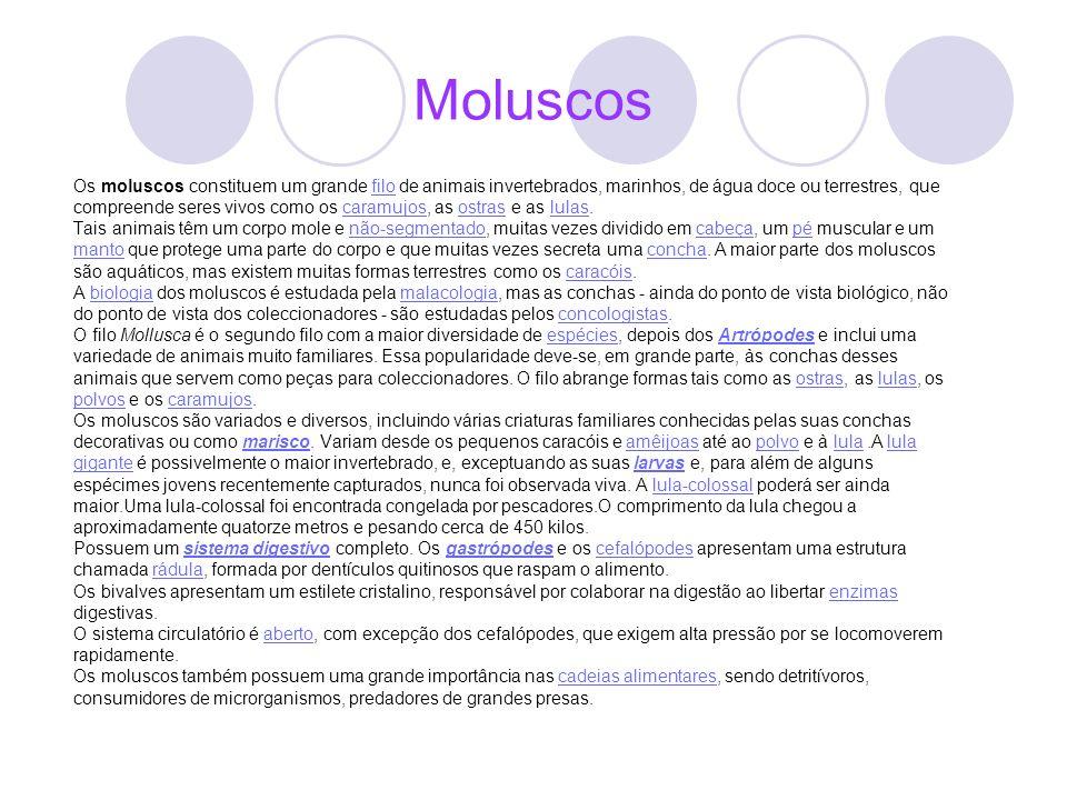 Moluscos Os moluscos constituem um grande filo de animais invertebrados, marinhos, de água doce ou terrestres, que.