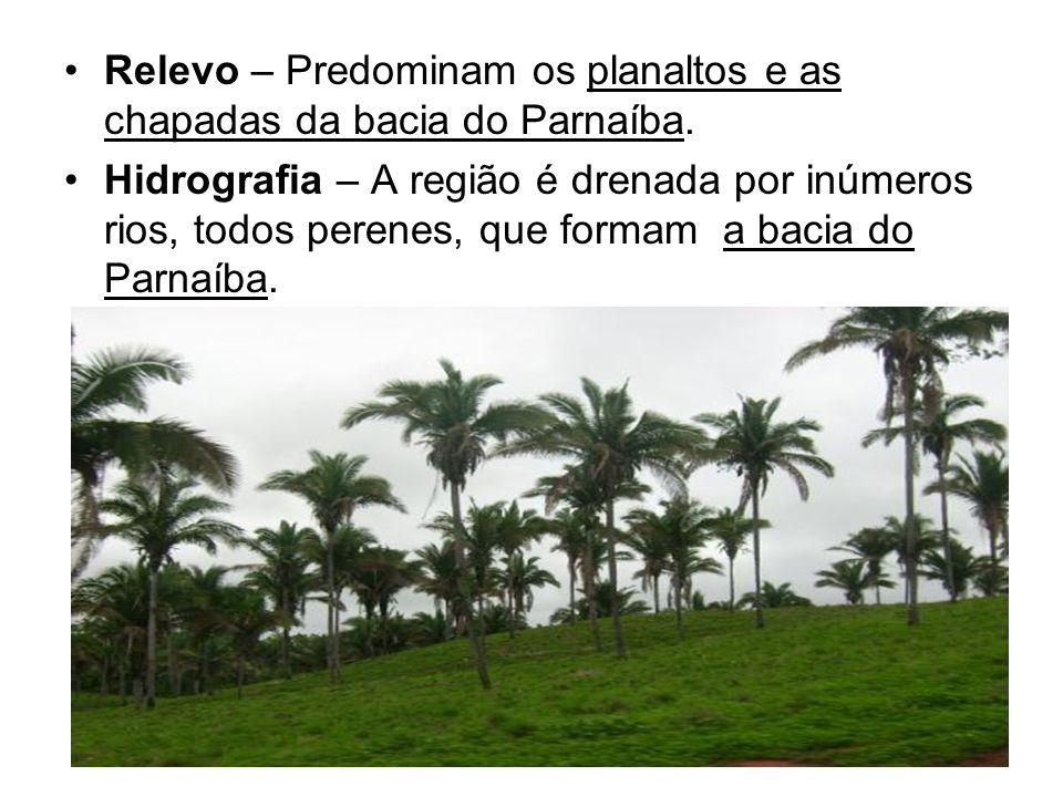 Relevo – Predominam os planaltos e as chapadas da bacia do Parnaíba.