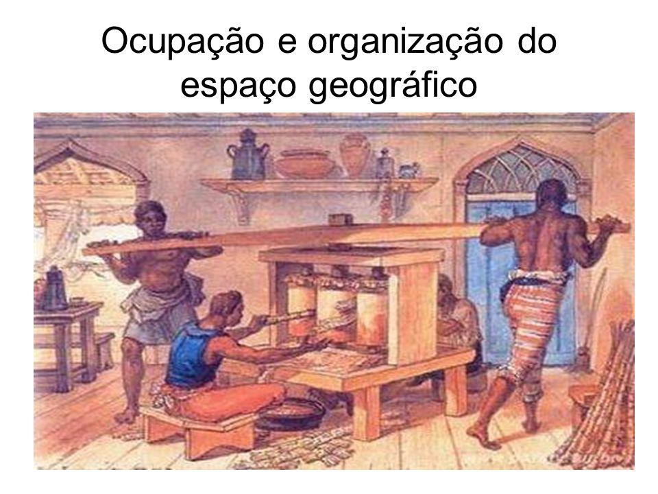 Ocupação e organização do espaço geográfico