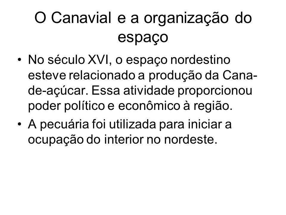 O Canavial e a organização do espaço