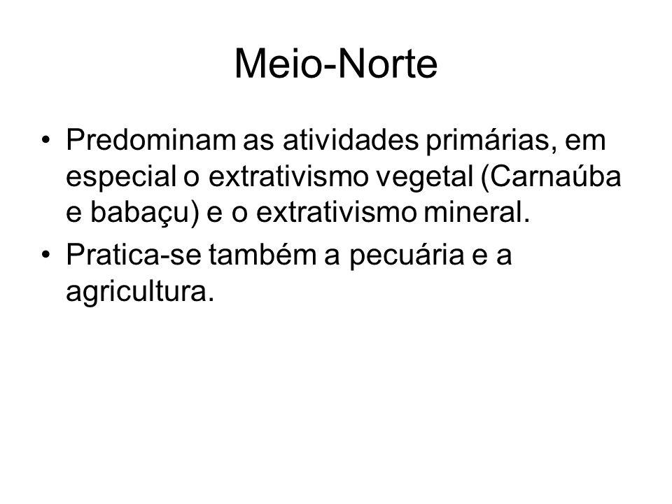Meio-Norte Predominam as atividades primárias, em especial o extrativismo vegetal (Carnaúba e babaçu) e o extrativismo mineral.
