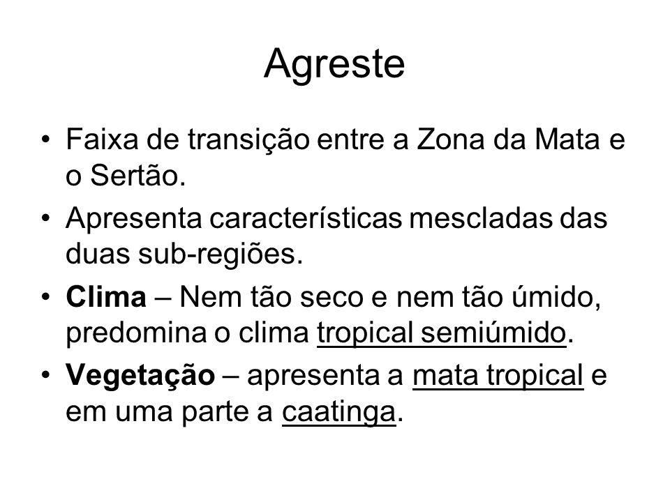 Agreste Faixa de transição entre a Zona da Mata e o Sertão.