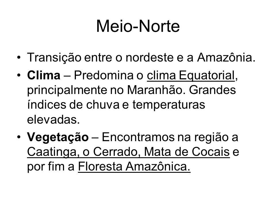 Meio-Norte Transição entre o nordeste e a Amazônia.