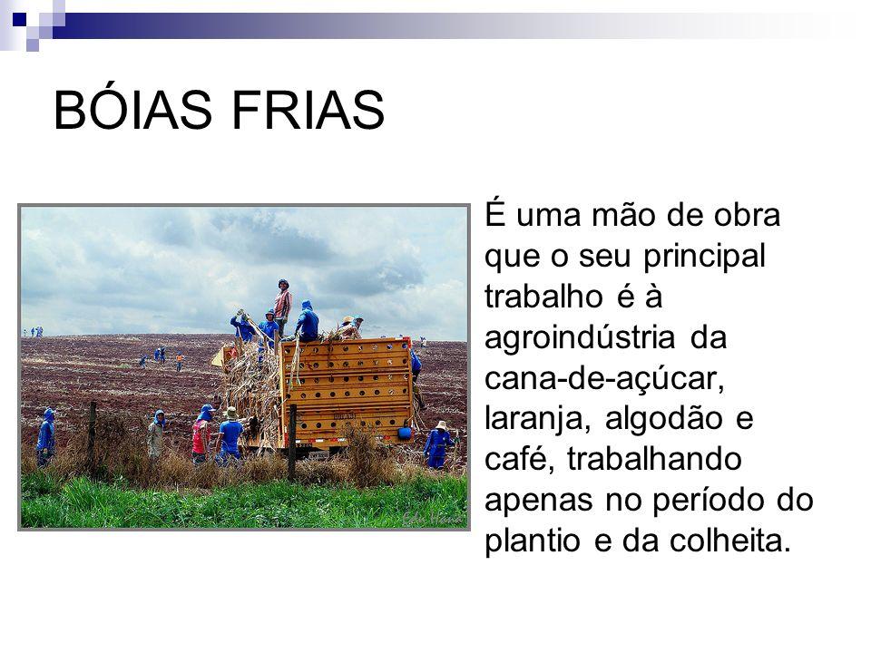 BÓIAS FRIAS