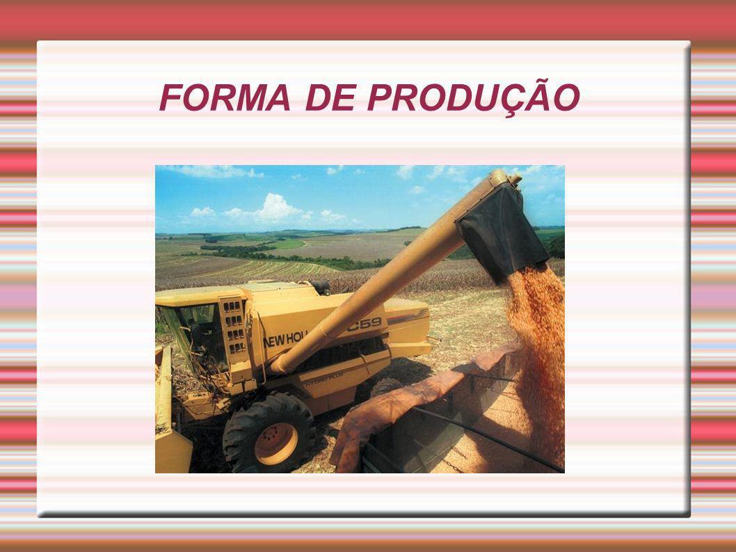 FORMA DE PRODUÇÃO