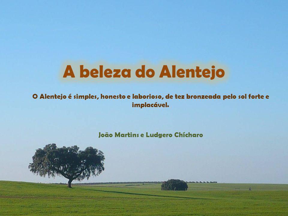 João Martins e Ludgero Chícharo