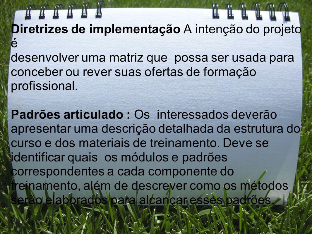 Diretrizes de implementação A intenção do projeto é desenvolver uma matriz que possa ser usada para conceber ou rever suas ofertas de formação profissional.