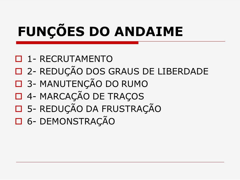 FUNÇÕES DO ANDAIME 1- RECRUTAMENTO 2- REDUÇÃO DOS GRAUS DE LIBERDADE