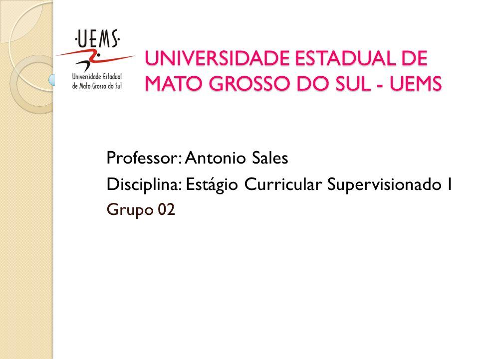 UNIVERSIDADE ESTADUAL DE MATO GROSSO DO SUL - UEMS