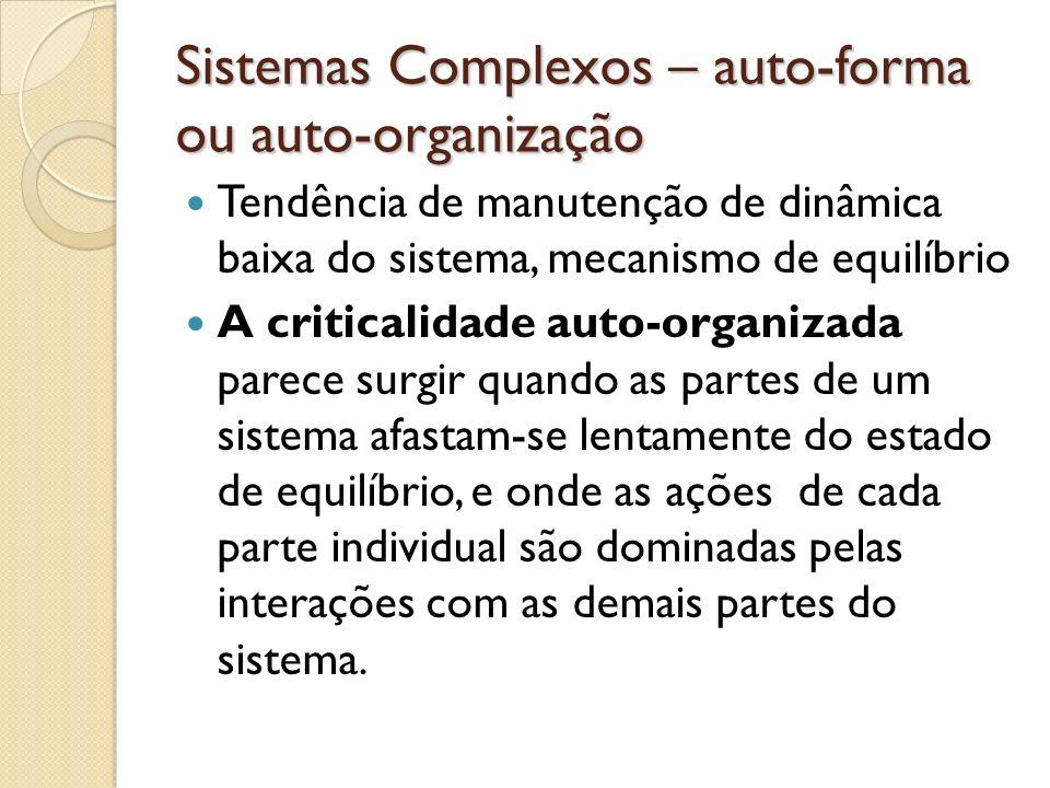 Sistemas Complexos – auto-forma ou auto-organização
