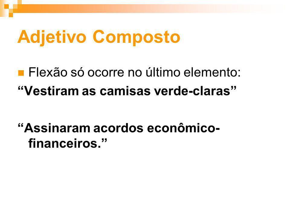 Adjetivo Composto Flexão só ocorre no último elemento: