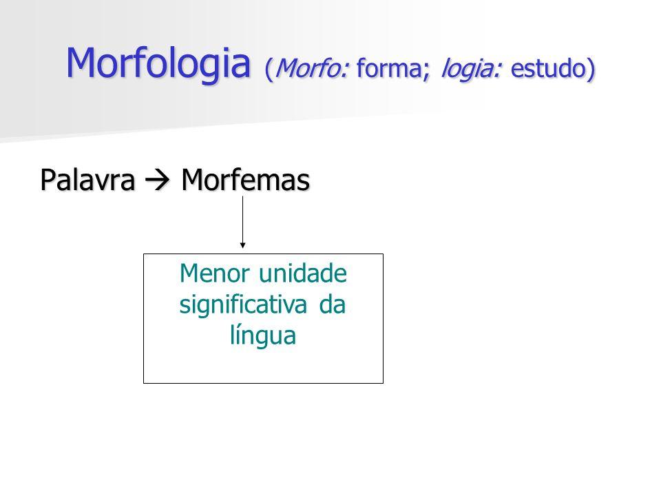Morfologia (Morfo: forma; logia: estudo)