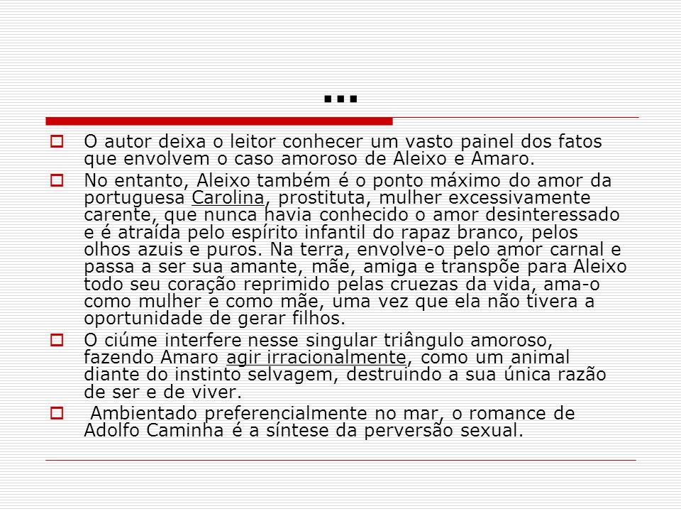 ... O autor deixa o leitor conhecer um vasto painel dos fatos que envolvem o caso amoroso de Aleixo e Amaro.