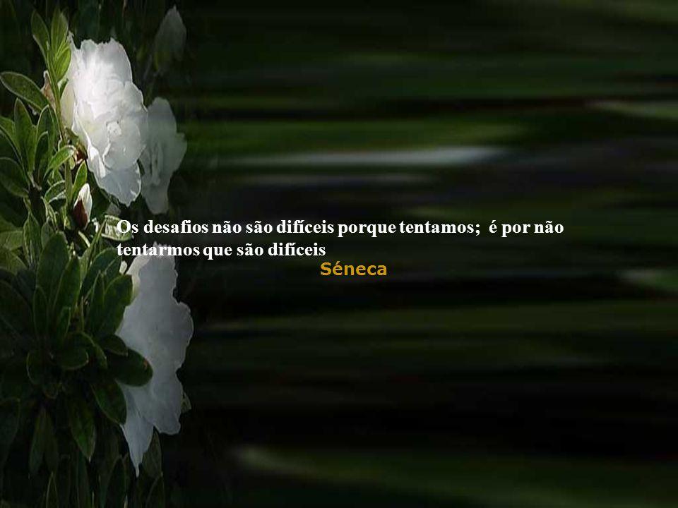 Os desafios não são difíceis porque tentamos; é por não tentarmos que são difíceis