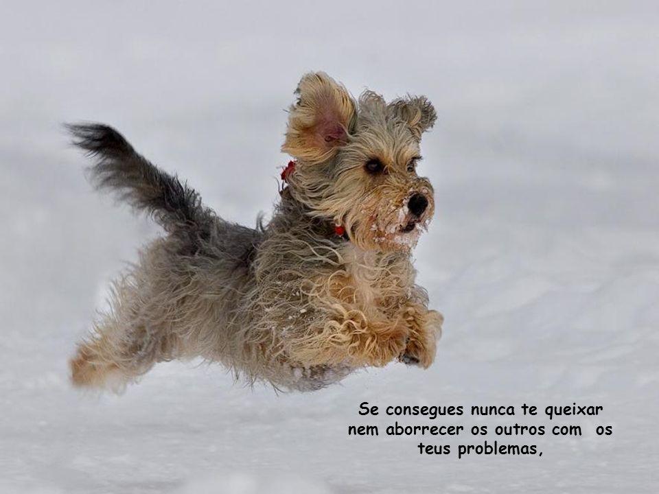 Se consegues nunca te queixar nem aborrecer os outros com os teus problemas,