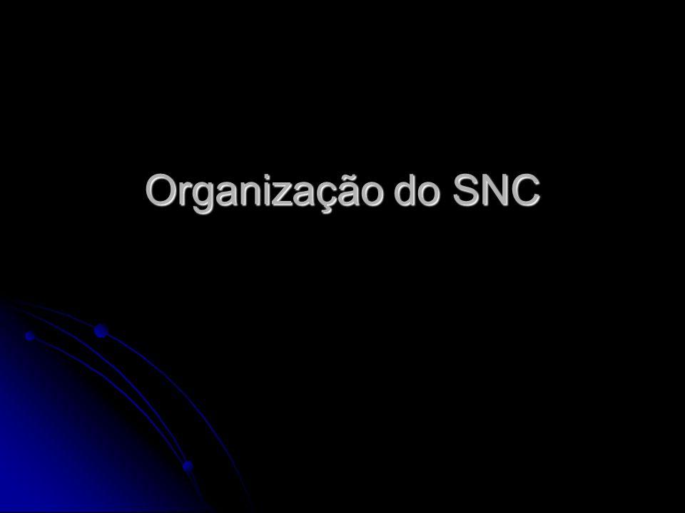 Organização do SNC Profª Diane Luce Bonito