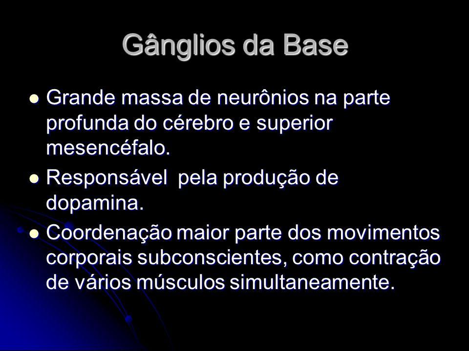 Gânglios da BaseGrande massa de neurônios na parte profunda do cérebro e superior mesencéfalo. Responsável pela produção de dopamina.