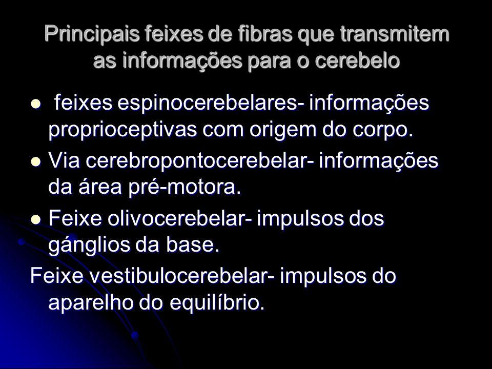 Principais feixes de fibras que transmitem as informações para o cerebelo