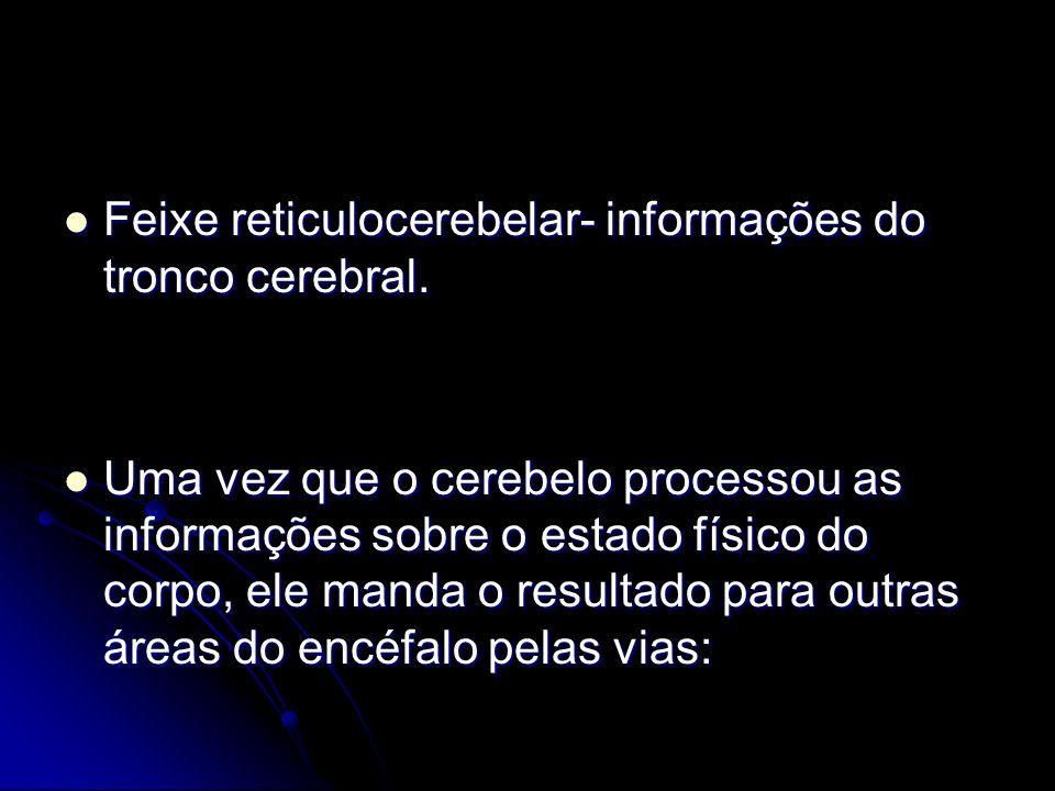 Feixe reticulocerebelar- informações do tronco cerebral.