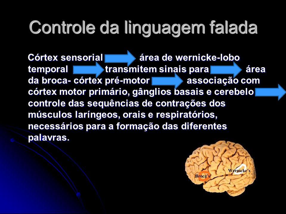 Controle da linguagem falada