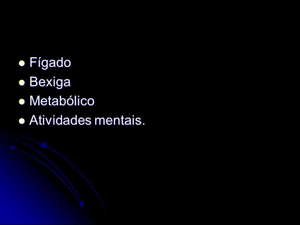 Fígado Bexiga Metabólico Atividades mentais.