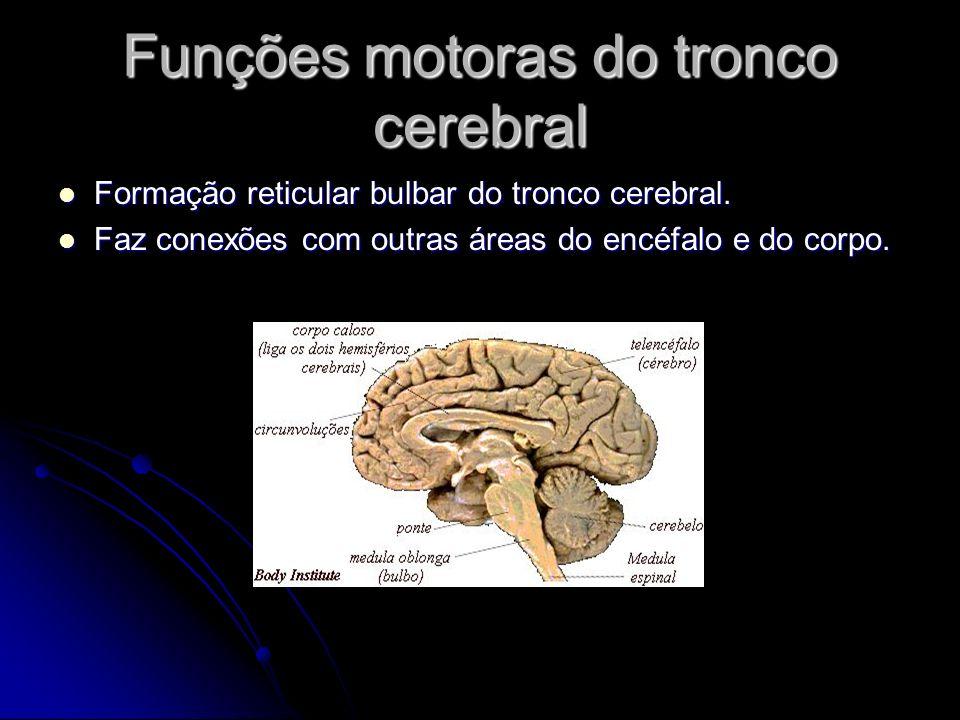 Funções motoras do tronco cerebral