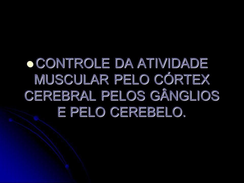 CONTROLE DA ATIVIDADE MUSCULAR PELO CÓRTEX CEREBRAL PELOS GÂNGLIOS E PELO CEREBELO.