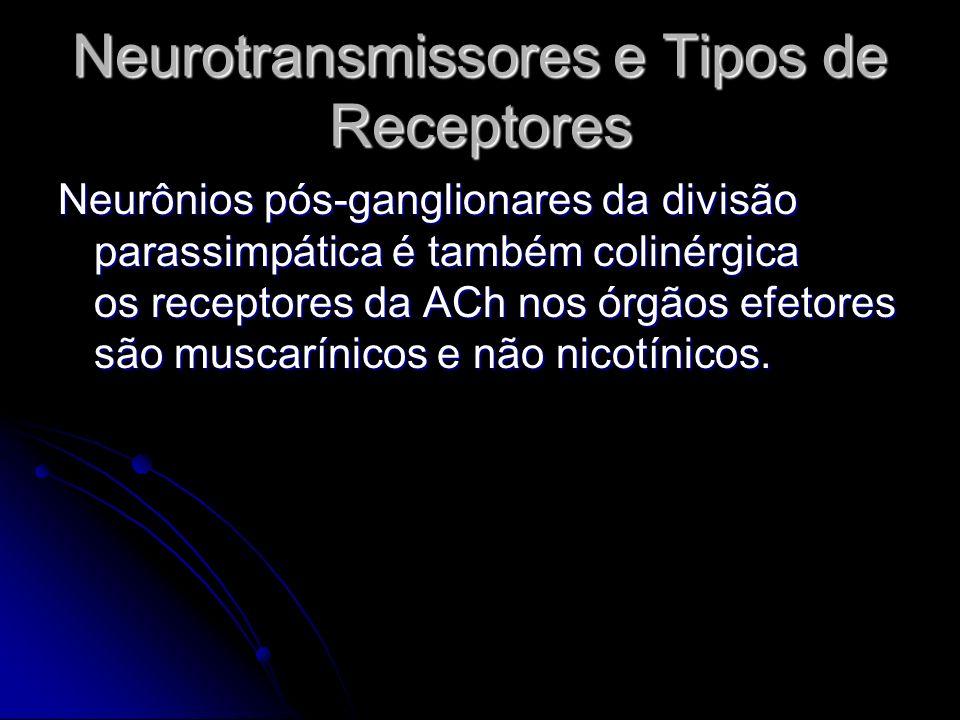 Neurotransmissores e Tipos de Receptores