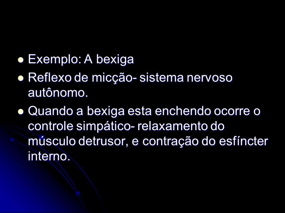 Exemplo: A bexiga Reflexo de micção- sistema nervoso autônomo.
