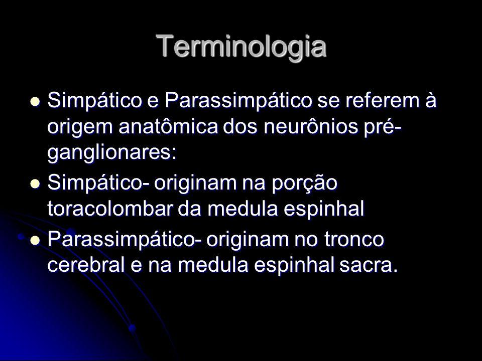 Terminologia Simpático e Parassimpático se referem à origem anatômica dos neurônios pré-ganglionares: