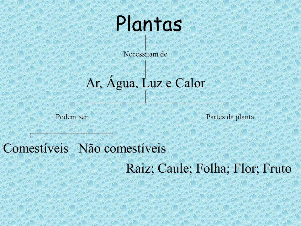 Plantas Ar, Água, Luz e Calor Comestíveis Não comestíveis