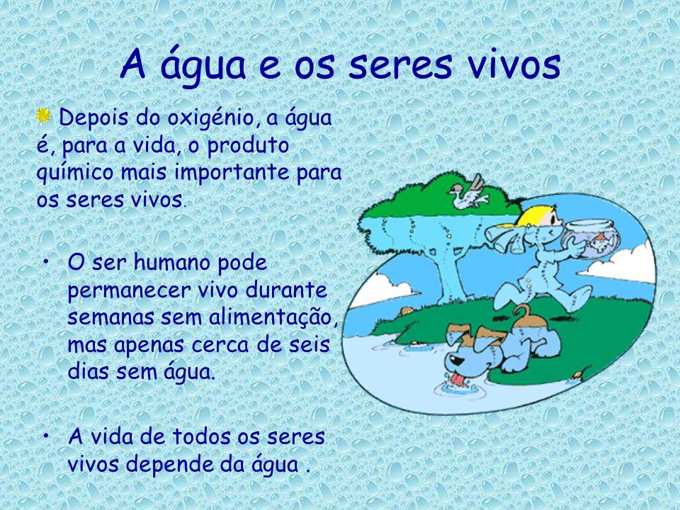 A água e os seres vivosDepois do oxigénio, a água é, para a vida, o produto químico mais importante para os seres vivos.