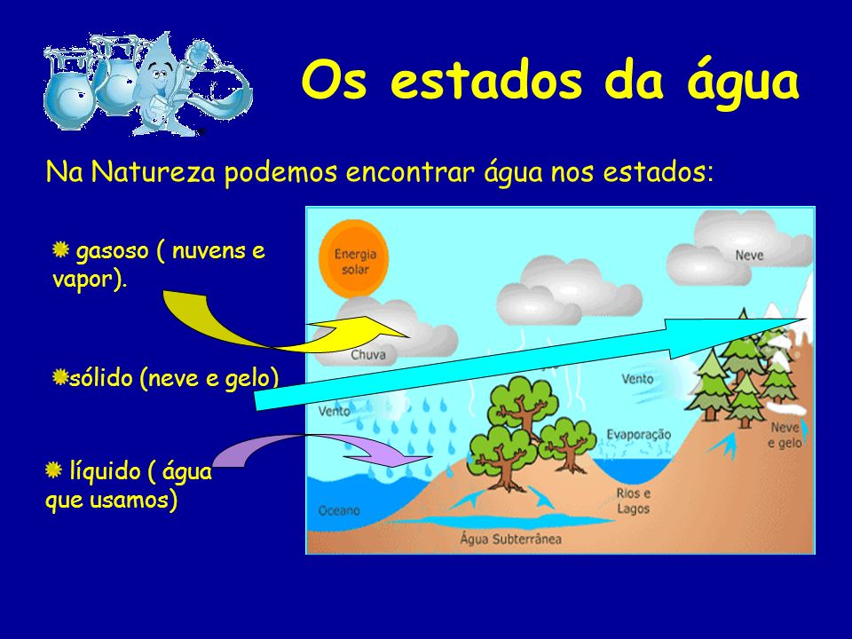Os estados da água Na Natureza podemos encontrar água nos estados: